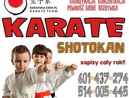 karateMini